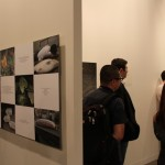 2011 Art Basel Miami (5)