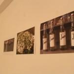 exhibition (5)
